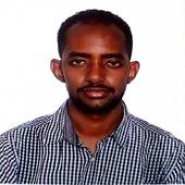 Mohammed Elbadri Hassan
